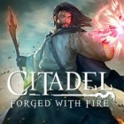 Citadel: Forged with Fire гра