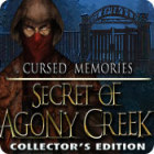 Cursed Memories: The Secret of Agony Creek Collector's Edition гра